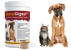 MaxxiDigest-Plus-with-scoop-models